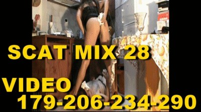 Scat Mix Nr 28 By Mistress Isabella