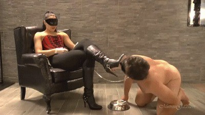 Mistress Gaia – Eat My Caviar Scat