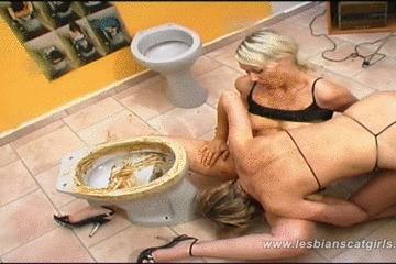 Toilet Scat Sex
